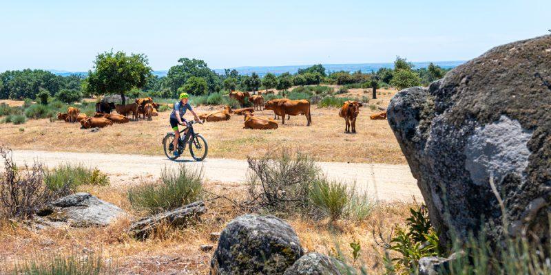Hi-Biking. Fietsen met een speed pedelec (snelle e-bike) van Madrid naar Lissabon met Benno Ponds van Hi-Biking.